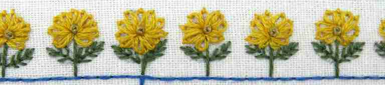 lazy daisy flowers