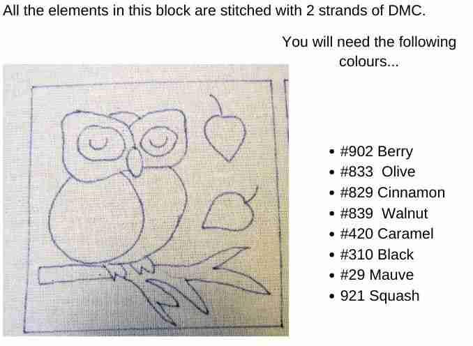 owl colour guide